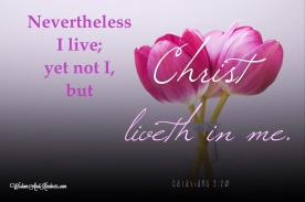 I live yet not I
