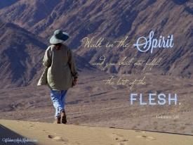 Walk in the Spirit